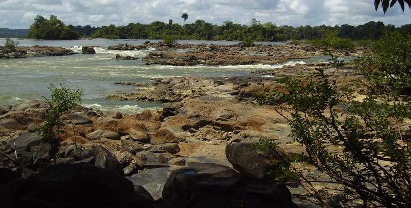 Bibliosphère : Nager avec les piranhas – Michel Onfray