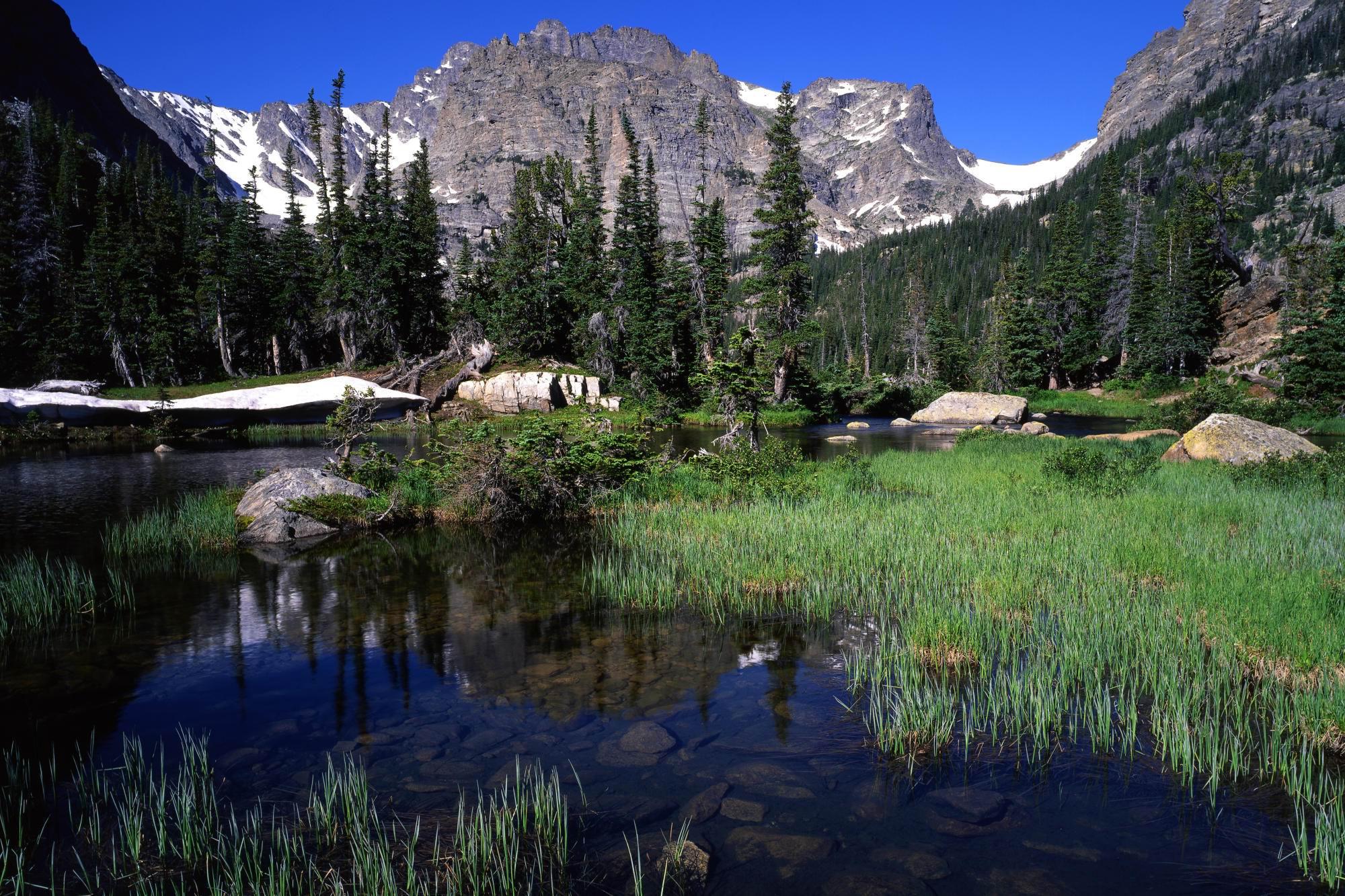 Penser l'écologie (2/2) : fragments d'un discours écolo
